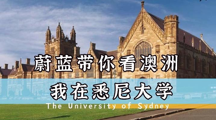 我在悉尼大学|悉尼大学学姐上课必经之路!